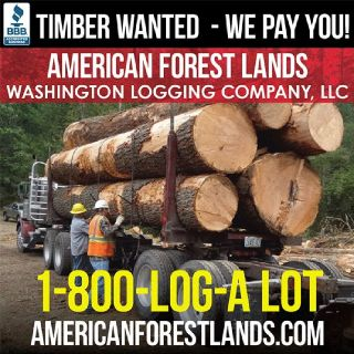 TIMBER LOGGING COMPANY, TOP Dollar Paid. Cedar Fir Hemlock Western Washington