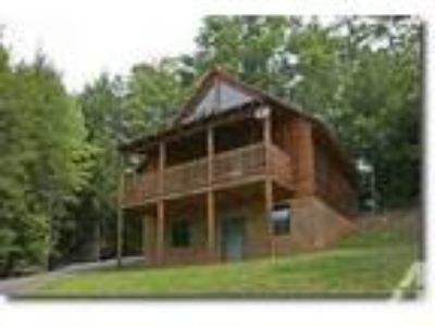 $100 / 1 BR - Always Misbehavin in the Smokies! (Gatlinburg, T