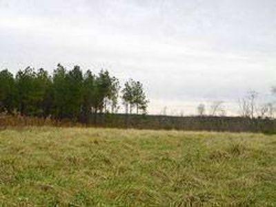 Land for Development in Ider, Alabama, Ref# 42009