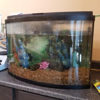 Fish tank and stand, 55 gallon
