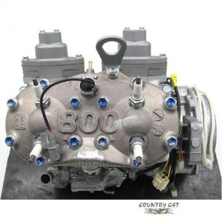 Purchase Arctic Cat 2010-17 ZR F CF XF M 800 HO Complete Snowmobile Engine Motor 0662-609 motorcycle in Sauk Centre, Minnesota, United States, for US $2,927.95