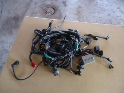 Buy 2001 Triumph TT 600 Wiring Harness End Terminals Pig Tails motorcycle in Saint Louis, Missouri, US, for US $79.99
