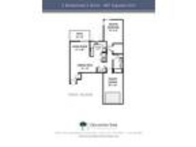 Oklahoma Park Townhomes - One BR, One BA Lower Townhome