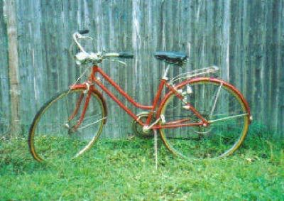 $50 Womens 3 Speed Shwinn Bike (Cranberry Color)