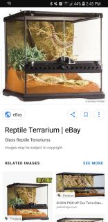ISO front opening terrarium for bearded dragon