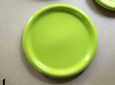 "4 Green 10.5"" Plastic Plates Large Camping Camper Lime Picnic Outdoor BBQ Cook Out"