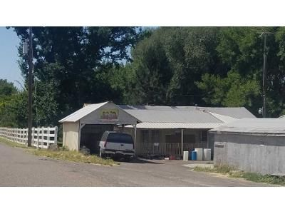 3 Bed 2 Bath Preforeclosure Property in Payette, ID 83661 - N River Rd