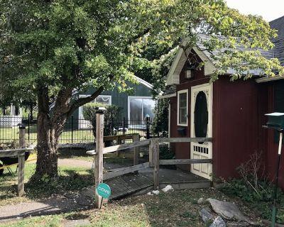 Red Cottage in Norwich - Norwichtown