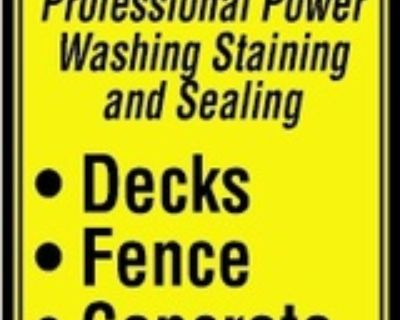 RICH'S POWER WASH AND STAIN P...