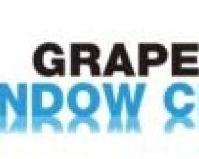 Grapevine Window Cleaning