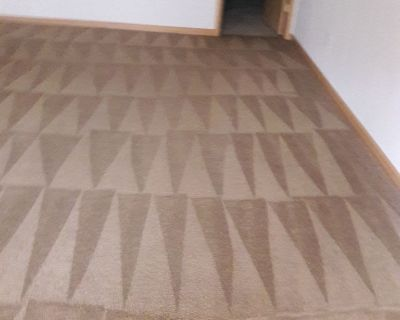 Carpet cleaning,maid services