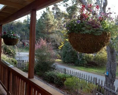 Charming Remodeled Single Level. HotTub. Gorgeous fenced backyard. Porch view! - Lodge Hill