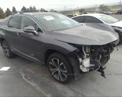 Salvage Gray 2020 Lexus Rx