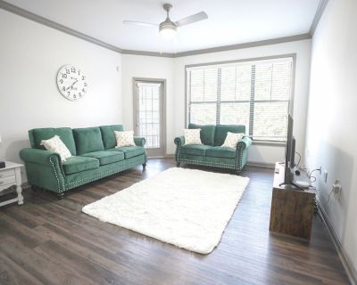 Furnished Two Bedroom Apartment Ideal Location in Atlanta - Piedmont Heights