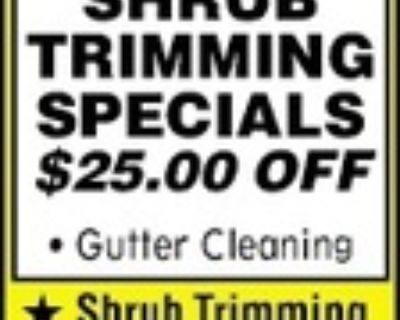 T-3 Landscaping LAWN CUTS Star...