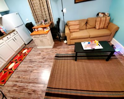 Stunning, Clean, & Cozy 1 Bedroom Apt close to downtown! - Indianapolis