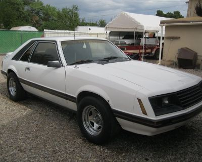 Project 1982 Mustang Hatchback