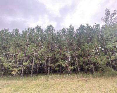 9.64 Acres for Sale in Mountain Iron, MN