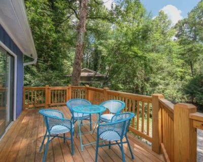 Cozy Asheville cottage across the street from the Swannanoa River - Asheville