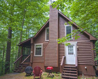 Mountain Lure Log Cabin, No Pets, wood burning fireplace - Blairsville
