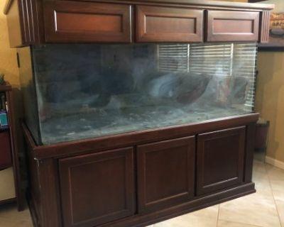 300 Deep Dimension Gallon Glass Aquarium, Stand, Canopy, Plumbing
