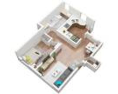Ladera Townhouse - The Standard