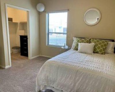 504 East 9th Street #101A, Tucson, AZ 85705 3 Bedroom Apartment