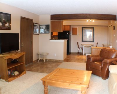 Executive, Fully Furnished, 3 month minimum or more Condo home, Very Nice! - Union Square