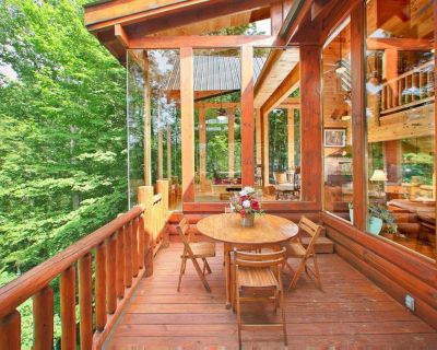 Pet-friendly cabin with fireplace, hot tub, and seasonal pool access - Pigeon Forge