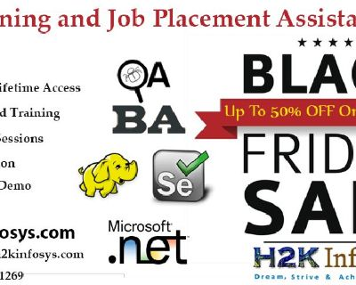 Best IT Online Training & Job support by H2kinfosys.