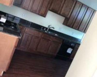 329 N 3rd St #3, San Jose, CA 95112 4 Bedroom Apartment