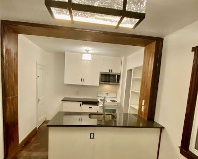 3Br Lux Edgewood Townhome - Lyon Park