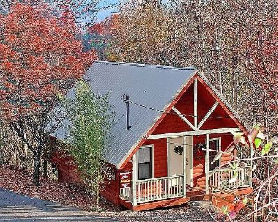 Over $700 in FREE TICKETS, Heart Jacuzzi, Hot Tub, King Bed, Internet, 5 minutes to Aquarium - Gatlinburg