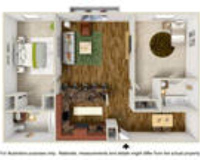 Woodland Trio Apartments - 2 Bedroom 2 Bath