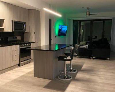 Atlanta Stylish Apartment with Beautiful View, Chamblee, GA