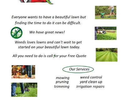 Weeds Lawncare