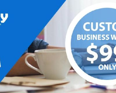 Top Quality Professional Website Design Service From $99 Only