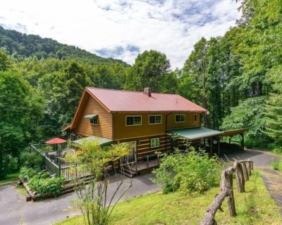 Peace & Serenity Cabin | Private Hiking Trail, Koi Pond & Fire pit! - Barnardsville