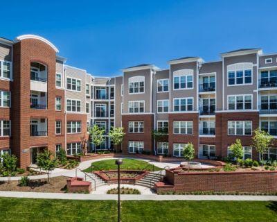 Radiant Fairfax Ridge Apartments