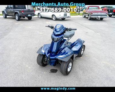2021 Miscellaneous Golf Cart