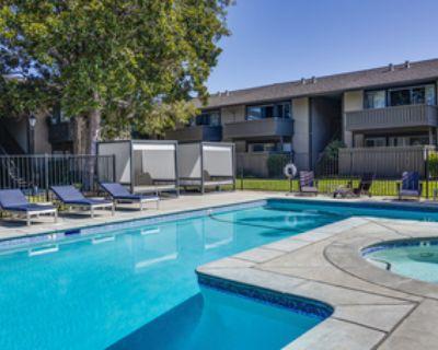 2B2B apartment near San Antonio Shopping Center (below market price)