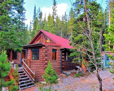 Fully-Furnished 3 BR Mountain Log Cabin at St. Mary's Glacier - Saint Mary's