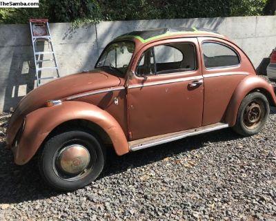 VW Volkswagen January 1962 Beetle Bug Ragtop