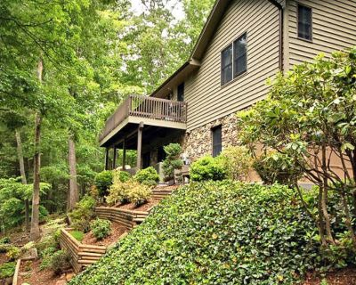 Relax with a View Just 5 minutes from Downtown Asheville NEW DISCOUNTS APPLIED - Asheville
