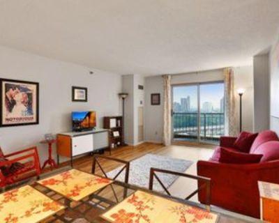 401 S 1st St #1215, Minneapolis, MN 55401 1 Bedroom Condo