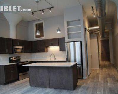 133 East 7th Street Ramsey, MN 55101 1 Bedroom Apartment Rental