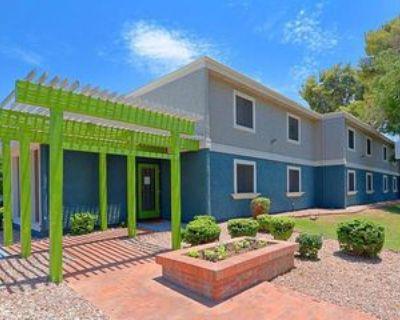 1045 S San Jose, Mesa, AZ 85202 1 Bedroom Apartment