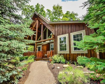 Cozy Cabin w/Indoor Hot Tub, 2 Wood Fireplaces, & Foosball Table! - Thayerville