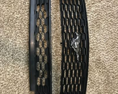 2017 Mustang Ecoboost stock grill