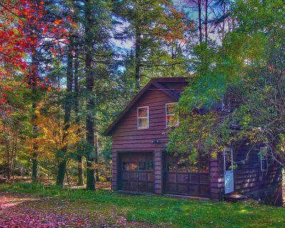 Cozy Lakeside Cottage - 1 Bedroom - Upper St. Regis Lake - Near Lake Placid - Lake Clear